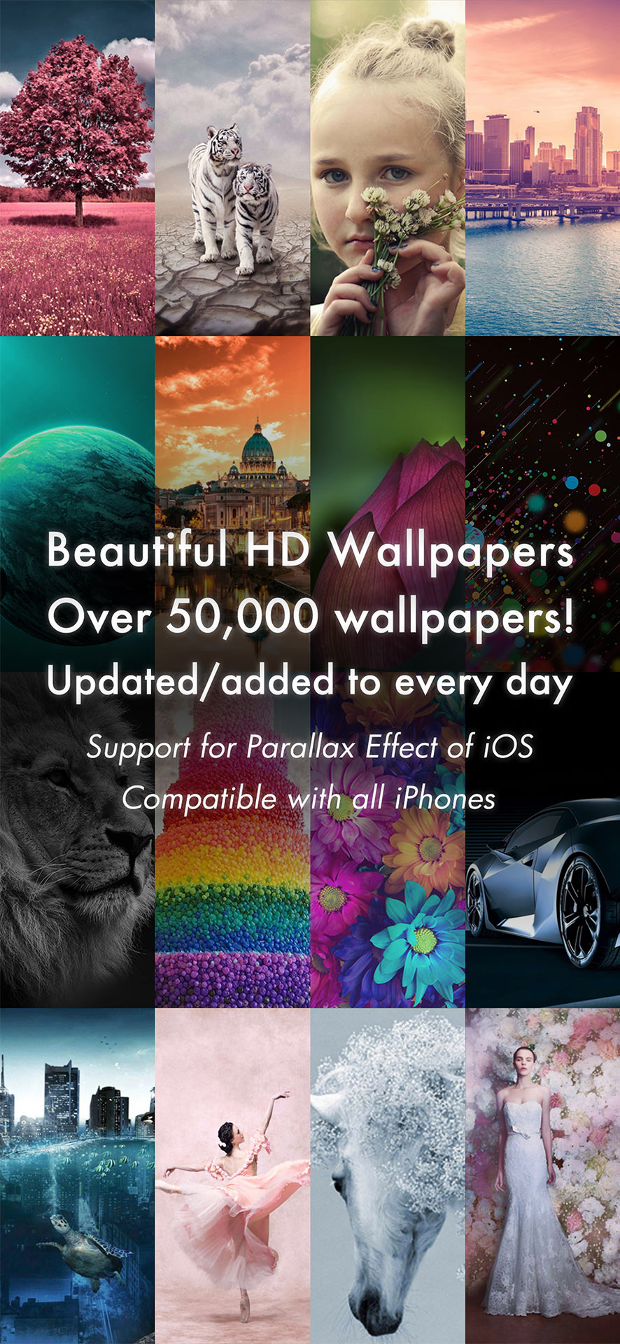 Beautiful Hd Wallpapers For Iphone 12 12 Mini 12 Pro 12 Pro Max Se Iphone Ipod App Dolice